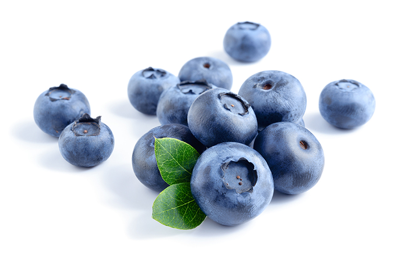 blueberry growers